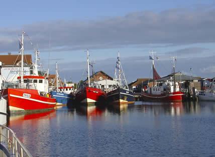 Wir bringen Euch zum Fisch - Hochseeangelkutter