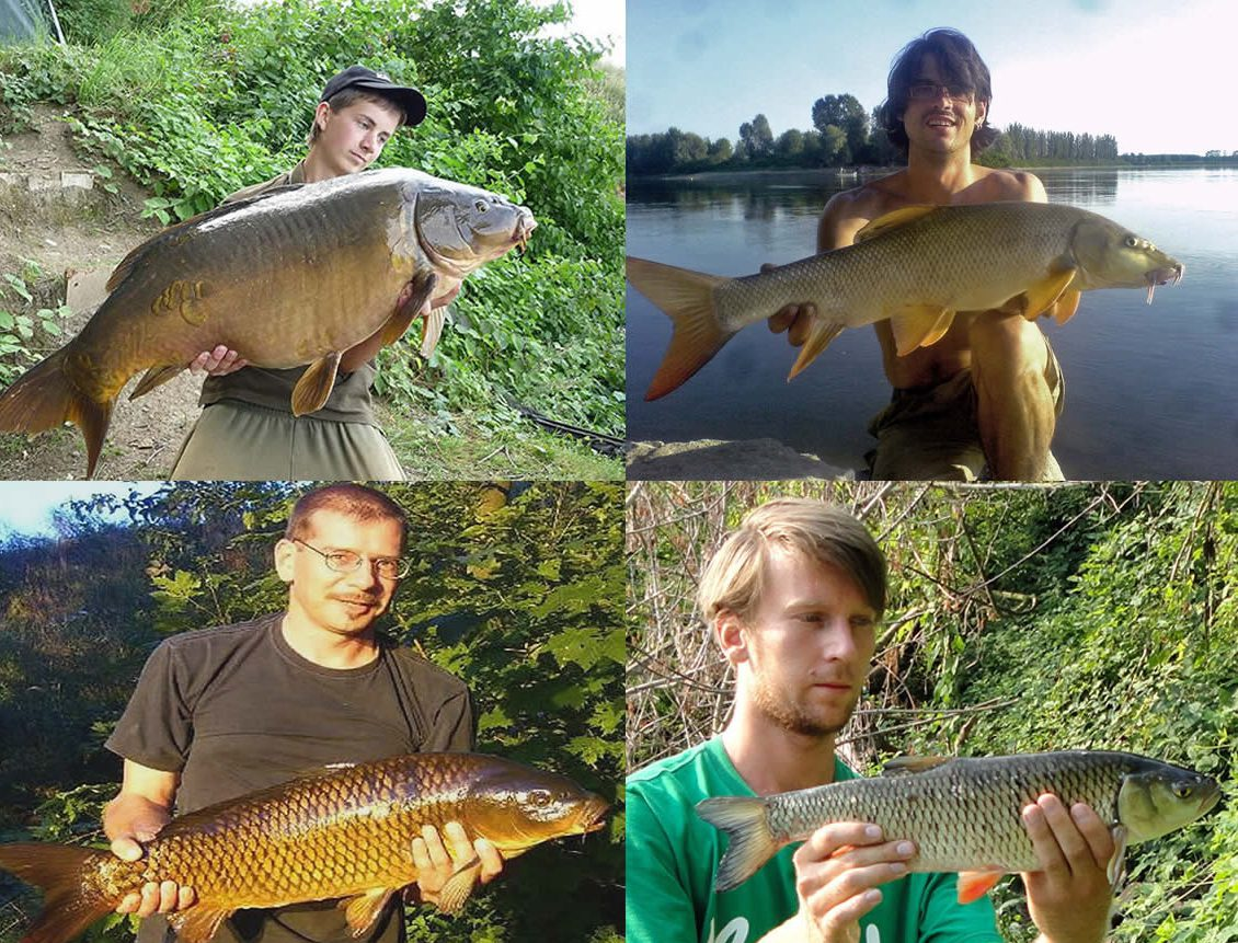 BIG ONE-Hitliste Friedfische