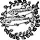 Vereinswappen Angelsportverein Niedernhausen Taunus e.V.