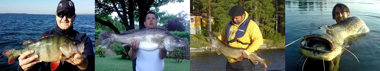 Foto AiD Angelportal - Kategorieseite BIG ONE-Hitliste Raubfische