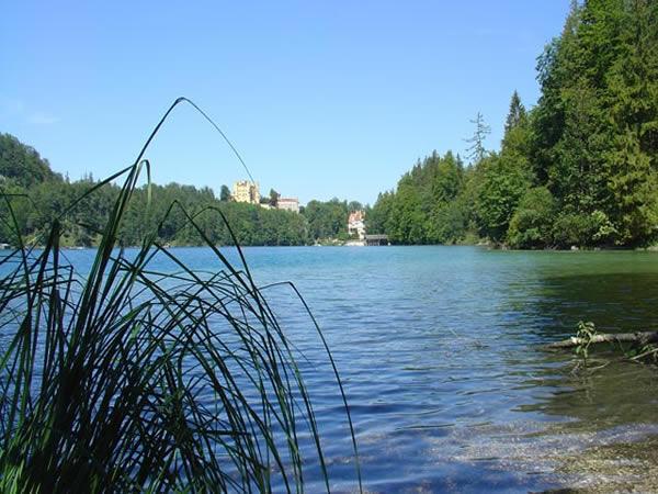 Alpsee - Bayern - AiD Angelportal - Angelgewässer in Deutschland - Seen - Foto