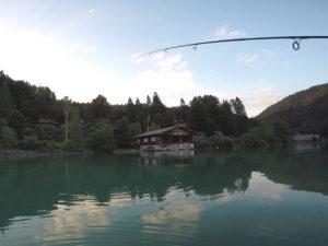 AiD Fotogalerie - Angeln auf Renken im Walchensee 2016 - Foto 10