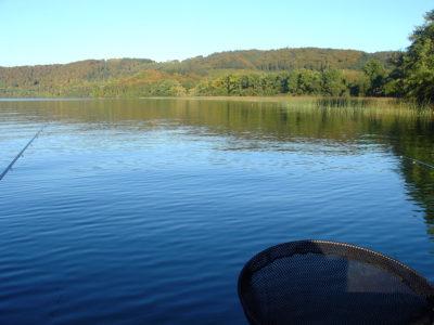 AiD Fotogalerie - Angeln im Laachersee - Beitragsbild