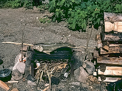 AiD Fotogalerie - Angeln in Kanada 1984 - Foto 44