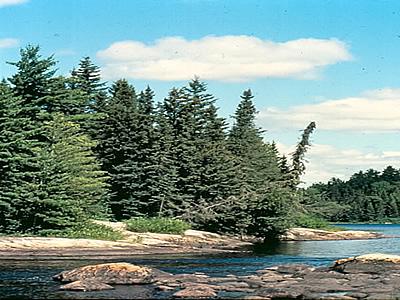 AiD Fotogalerie - Angeln in Kanada 1984 - Foto 78