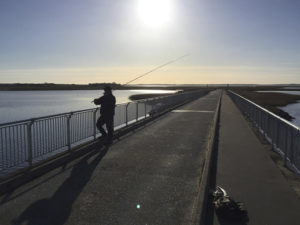 AiD Fotogalerie - Angeltour Dänemark Insel Mön 2016 - Foto 26