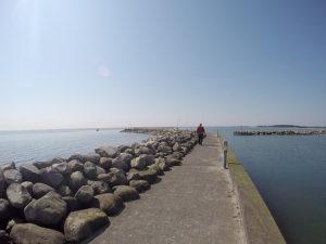 AiD Fotogalerie - Angeltour Dänemark Insel Mön 2016 - Foto 34