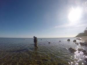 AiD Fotogalerie - Angeltour Dänemark Insel Mön 2016 - Foto 56