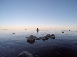 AiD Fotogalerie - Angeltour Dänemark Insel Mön 2016 - Foto 70