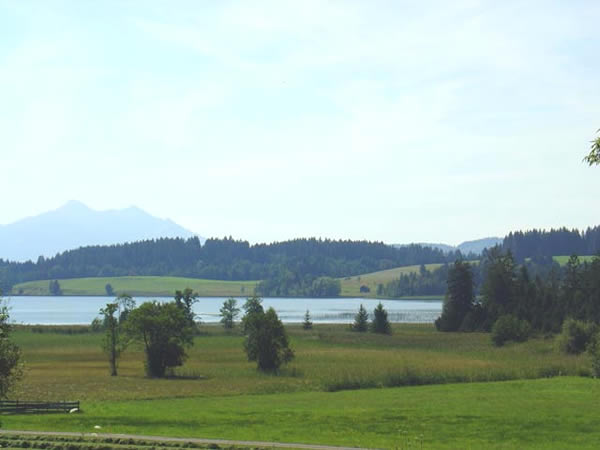 Bannwaldsee - Bayern - AiD Angelportal - Angelgewässer in Deutschland - Seen - Foto