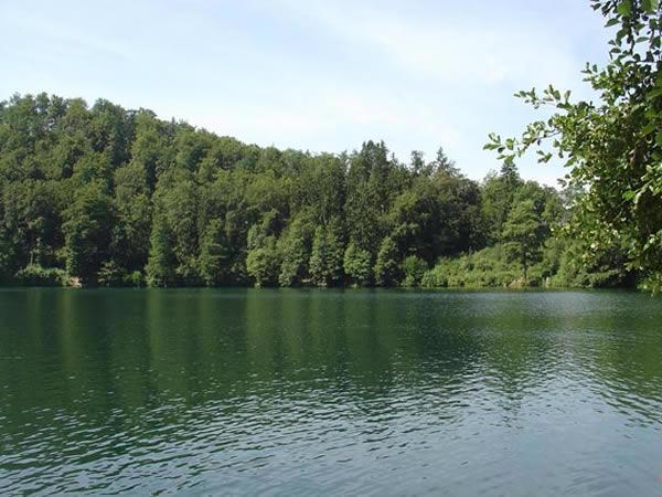 Gemündener Maar - Rheinland-Pfalz - AiD Angelportal - Angelgewässer in Deutschland - Seen - Foto