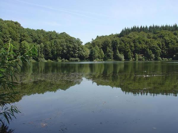 Holzmaar - Rheinland-Pfalz - AiD Angelportal - Angelgewässer in Deutschland - Seen - Foto