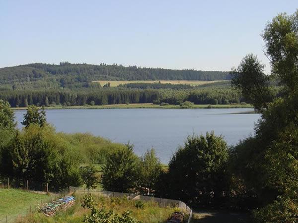 Jungfernweiher - Rheinland-Pfalz - AiD Angelportal - Angelgewässer in Deutschland - Seen - Foto