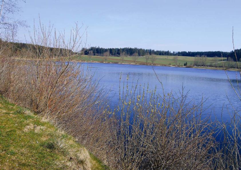Kirnbergsee - Baden-Württemberg - AiD Angelportal - Angelgewässer in Deutschland - Seen - Foto
