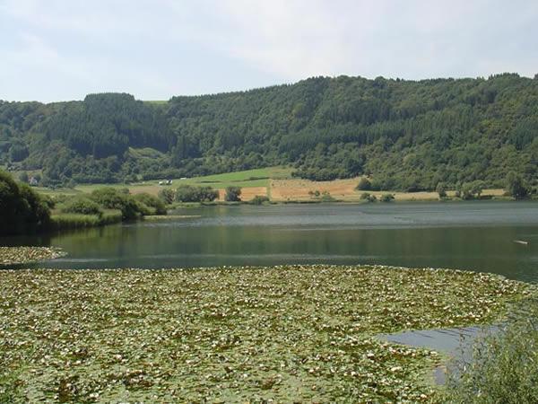Meerfelder Maar - Rheinland-Pfalz - AiD Angelportal - Angelgewässer in Deutschland - Seen - Foto
