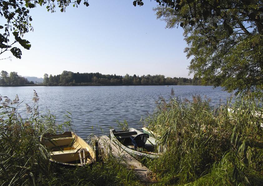 Ruschweiler See - Baden-Württemberg - AiD Angelportal - Angelgewässer in Deutschland - Seen - Foto