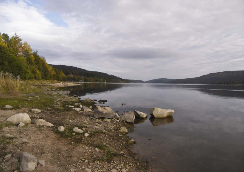 Schluchsee - Baden-Württemberg - AiD Angelportal - Angelgewässer in Deutschland - Seen - Foto