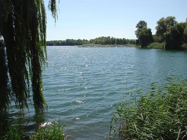 Steinsee - Rheinland-Pfalz - AiD Angelportal - Angelgewässer in Deutschland - Seen - Foto