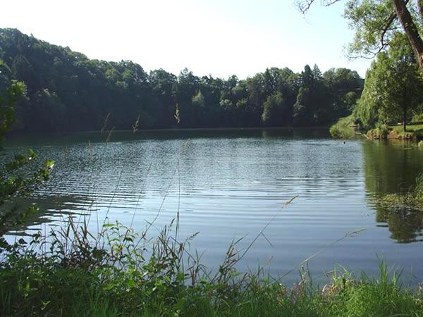 Ulmener Maar - Rheinland-Pfalz - AiD Angelportal - Angelgewässer in Deutschland - Seen - Foto
