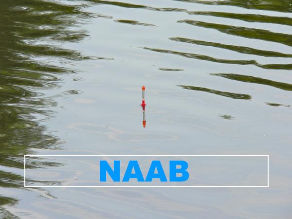 Fluss Naab - Angelgewässer in Deutschland - Bayern - Fronberg bis Klardorf - Foto