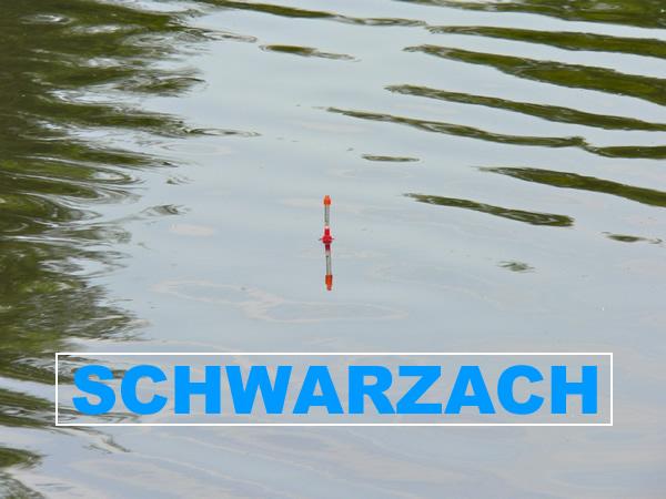 Fluss Schwarzach - Angelgewässer in Deutschland - Bayern - Neunburg vorm Wald - Teilstrecke 1 - Foto