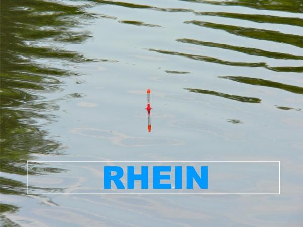 Fluss Rhein - Angelgewässer in Deutschland - Rheinland-Pfalz - Flüsse - Angelstrecke Osterspai bis Rolandswerth - Foto - Landkarte