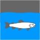 Icon Piktogramm - Fischbesatz