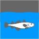 Icon Piktogramm - Fischarten Dorsch Wittling Plattfisch