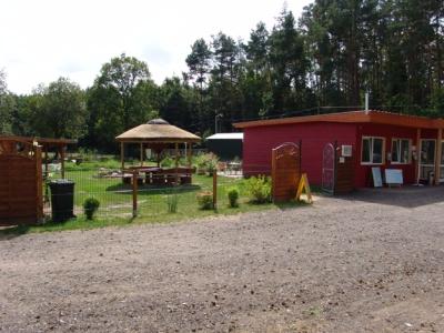 Campingplatz Waldcamp - Kröslin Freest - Mecklenburg-Vorpommern - Standard Anzeige - Campingplätze - Foto 2