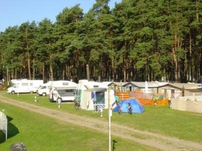 Campingplatz Waldcamp - Kröslin Freest - Mecklenburg-Vorpommern - Standard Anzeige - Campingplätze - Foto 3