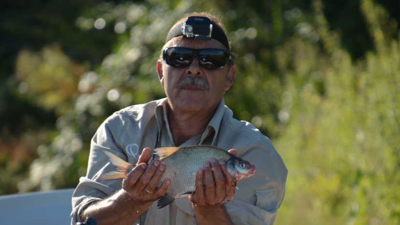 Video - Angelfilm - AiD Angelportal - Angeln in den Niederlanden 2017 - Angeln auf Friedfische und Raubfische