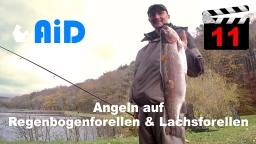 AiD media fishing - Videofilm Nr. 11 - Angeln auf Regenbogenforellen und Lachsforellen 2017