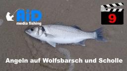 AiD media fishing - Videofilm Nr. 9 - Angeln auf Wolfsbarsch