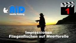AiD media fishing - Videofilm Nr. 1 - Impressionen Fliegenfischen auf Meerforelle