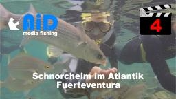 AiD media fishing - Videofilm Nr. 4 - Schnorcheln im Atlantik - Fuerteventura