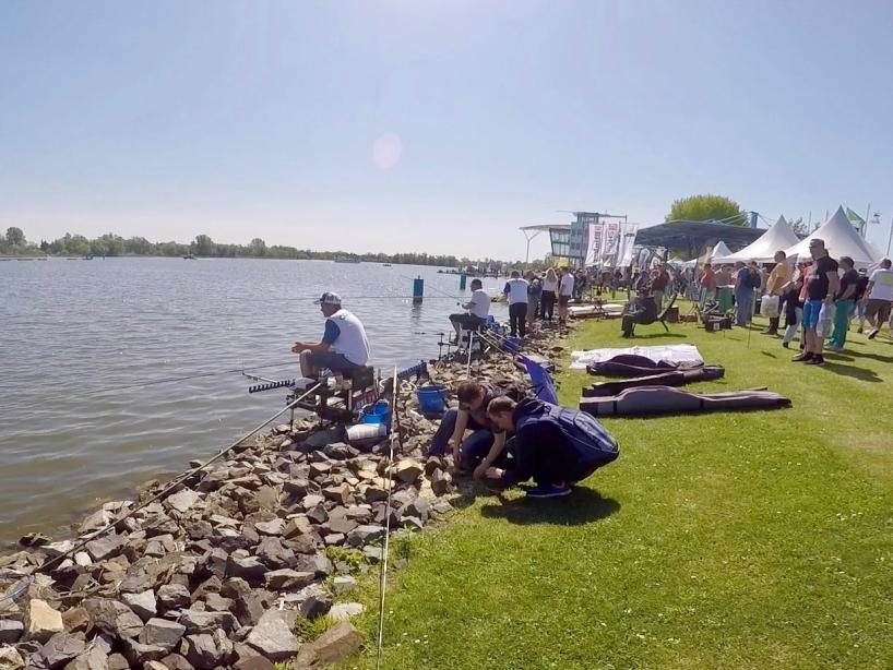 Anglermeile Foto 1 - Fishing Masters Show 2018 - Beetzsee - Brandenburg an der Havel - Deutschland