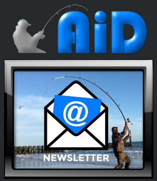 Banner Newsletter - AiD Angelportal
