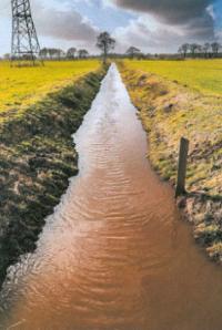 AiD Presse-News - Angeln hilft Naturschutz - Die Wapel vor der Renaturierung