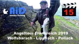 AiD Media Fishing - Videofilm Nr. 15 - Angeltour Frankreich 2019 - Wolfsbarsch - Lippfisch - Pollack